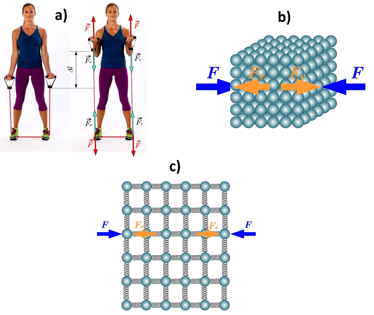 Elastibas spēks molekulas